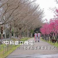 台中市休閒旅遊 景點 景點其他 崴立機電(中科后里園區)櫻花步道 照片