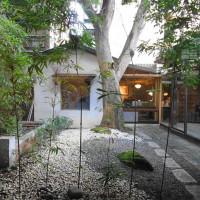 台北市美食 餐廳 咖啡、茶 中式茶館 青田茶館 照片