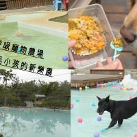 台南市休閒旅遊 運動休閒 運動休閒其他 森。呼吸-寵物休閒農場 照片