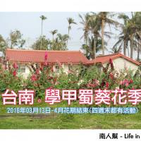 台南市休閒旅遊 景點 動物園 學甲蜀葵花季 照片