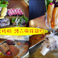 高雄市美食 餐廳 火鍋 麻辣鍋 聚梧桐 臻品麻辣鍋物 照片