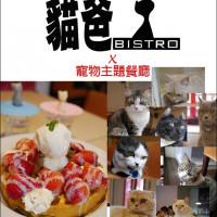 台中市美食 餐廳 咖啡、茶 咖啡館 貓爸貓咪主題餐廳 照片