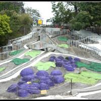 彰化縣休閒旅遊 景點 公園 彰化員林百果山溜滑梯 照片