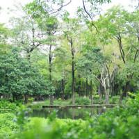 高雄市休閒旅遊 景點 公園 大東濕地公園 照片