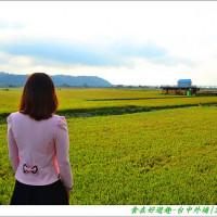台中市休閒旅遊 景點 景點其他 外埔忘憂谷 照片