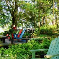 新竹縣休閒旅遊 景點 觀光花園 薰衣草森林(新竹尖石店) 照片