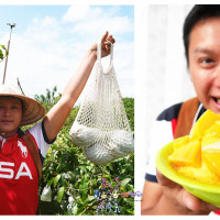 台南市休閒旅遊 景點 景點其他 玉井區農會 照片