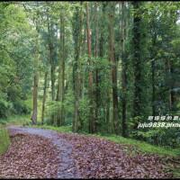 新竹縣休閒旅遊 景點 景點其他 鴛鴦谷瀑布 照片