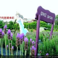 苗栗縣休閒旅遊 景點 景點其他 葛瑞絲香草田 照片