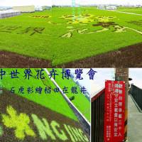 台中市休閒旅遊 景點 觀光農場 台中石虎彩繪稻田 照片