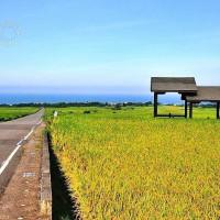 台東縣休閒旅遊 景點 景點其他 台東縣長濱鄉金剛大道 照片