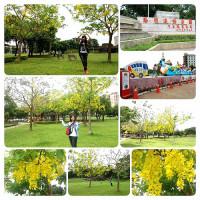 桃園市休閒旅遊 景點 公園 桃園陽明公園 照片