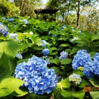 台中市休閒旅遊 景點 觀光花園 沐心泉休閒農場 照片
