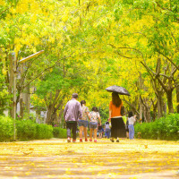 屏東縣休閒旅遊 景點 景點其他 屏東榮譽國民之家 照片
