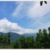 【台東 】布農族部落體驗│花東縱谷山外山秘境生態文化之旅│瓦尼民宿