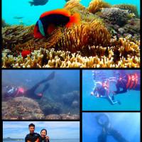 屏東縣休閒旅遊 景點 海邊港口 水到魚行浮潛館 照片