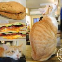 台北市美食 餐廳 飲料、甜品 飲料、甜品其他 貓圖咖啡 CAT. jpg cafe 照片