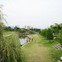 台中市休閒旅遊 景點 公園 興大康橋水岸公園 照片