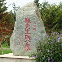 台中市休閒旅遊 景點 海邊港口 大安龜殼生態公園 照片