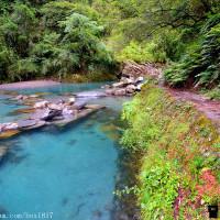 南投縣休閒旅遊 景點 景點其他 合歡溪步道 照片