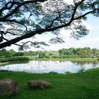 高雄市休閒旅遊 景點 公園 阿公店森林公園 照片