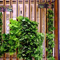 台北市美食 餐廳 素食 素食 蔬河微風松高店 照片