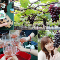 台中市休閒旅遊 景點 觀光果園 新峰農場 照片