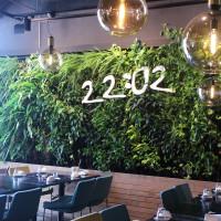 台北市美食 餐廳 火鍋 22:02樂活火鍋 (南港店) 照片