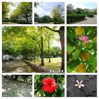 台中市休閒旅遊 景點 公園 崇倫公園 照片