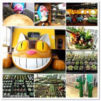 桃園市休閒旅遊 購物娛樂 創意市集 多肉植物市集 照片