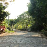 台南市休閒旅遊 景點 公園 西拉雅親子公園 照片