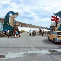 花蓮縣休閒旅遊 景點 景點其他 太平洋賞鯨 照片