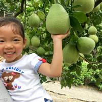 新北市休閒旅遊 景點 觀光果園 龍源農場 照片