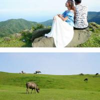 新北市休閒旅遊 景點 景點其他 桃源谷大草原 照片