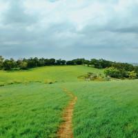 苗栗縣休閒旅遊 景點 觀光林園 南窩綠丘 照片