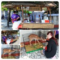 雲林縣美食 餐廳 飲料、甜品 飲料、甜品其他 涼心青草茶 照片