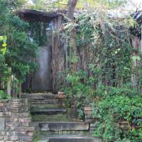 台南市休閒旅遊 景點 博物館 千畦種子博物館 照片