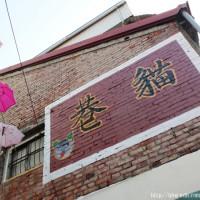 高雄市休閒旅遊 景點 景點其他 甲仙貓巷 照片