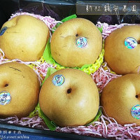 台中市美食 攤販 水果 新社龍安果園水梨 照片