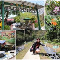 新竹縣休閒旅遊 景點 博物館 關西仙草博物館生態農場 照片