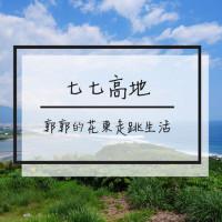 花蓮縣休閒旅遊 景點 景點其他 七七高地 照片