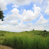 台南市休閒旅遊 景點 景點其他 木架山草原 照片