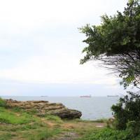 高雄市休閒旅遊 景點 景點其他 大自然 照片