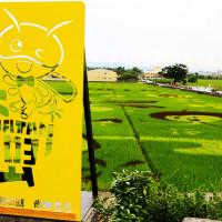 彰化縣休閒旅遊 景點 景點其他 三春老樹稻田彩繪 照片
