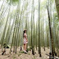 南投縣休閒旅遊 景點 景點其他 長源圳生態步道 照片