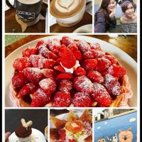 新竹市美食 餐廳 咖啡、茶 咖啡館 四隻貓 照片