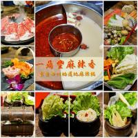 台中市美食 餐廳 火鍋 麻辣鍋 一鼎豐麻辣香火鍋 照片