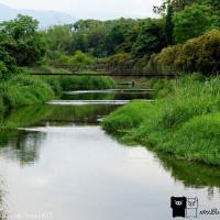 南投縣休閒旅遊 景點 景點其他 下坪小吊橋 照片