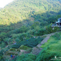 台北市休閒旅遊 景點 景點其他 貓空壼穴平台 照片