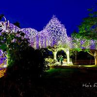 嘉義市休閒旅遊 景點 景點其他 蘭潭風景區 照片